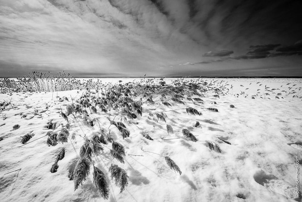 Landscape_P_Mevel-73